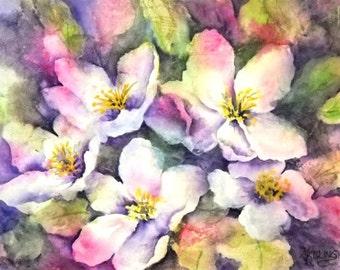 STUDIO SALE - Soft Watercolor of White Flowers - Martha Kisling Original Art