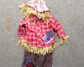 Scarecrow Costume size 9months