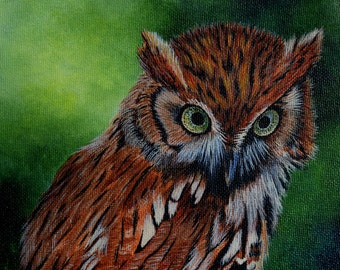 Framed Bird Painting:  Screech Owl  - original painting, spring, wildlife, nature painting, owls, birds, feathers, predator birds