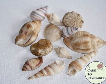 12 hand-colored Edible Seashells wedding cake topper for destination wedding ideas. Mermaid cake decorations, beach wedding cakes