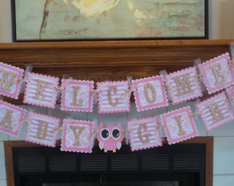 Special Price Owl Baby Banner, Pink Gold Glitter Welcome Baby Girl Banner, Owl Baby Shower Banner, Tissue poms are available
