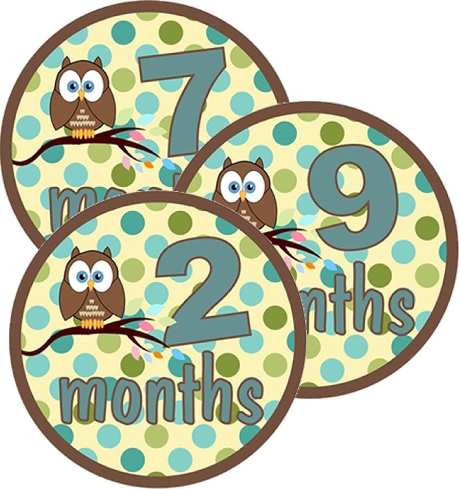 Owl Baby Gifts Australia : Owl onesie month stickers baby shower gift