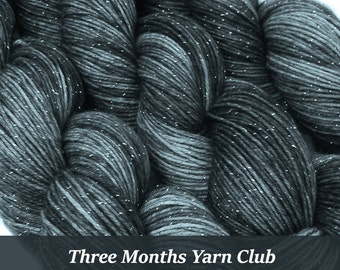 three months YARN CLUB pick your base - sw merino bfl silk nylon stellina fingering dk