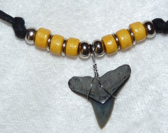 Fossil bull shark tooth necklace with Golden Yellow beads and adjustable cord