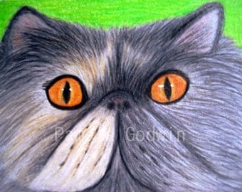 "Grey Persian Cat ACEO Print 2.5"" x 3.5"" ""Misty"""
