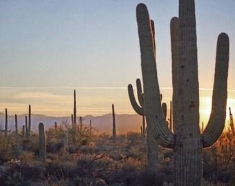 Desert Sunset Photography Print Fine Art Arizona Saguaro Cactus Rustic Mountain Southwest Winter Landscape Photography Print.