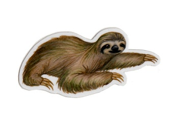 Sloth Wildlife Magnet / Wildlife Art / Refrigerator Magnet / Office Magnet / Party Favor / Small Gift
