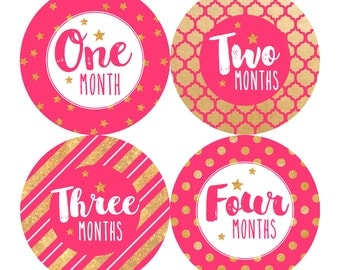 Gold and Pink Monthly Baby Stickers Baby Girl Month Stickers Milestone Stickers Monthly Photo Stickers Bodysuit Gold Foil Glitter (Ellie)