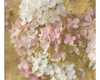 iCanvas Gilded Hydrangea II Gallery Wrapped Canvas Art Print by All That Glitters