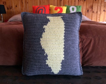 Customized Illinois State Crocheted 14 Inch Pillow Perfect Gift For Christmas