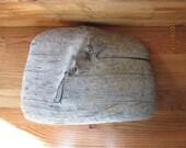 A Majestic Slab of Driftwood