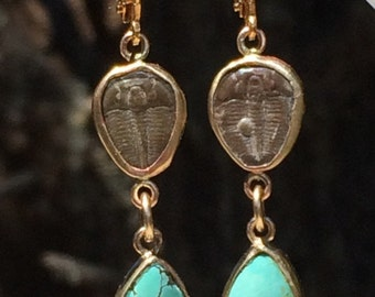 Brown Trilobites and Turquoise Teardrop Gold Earrings