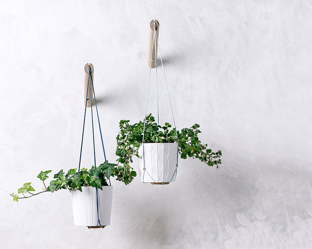 🔎zoom - Hanging Planter With Light Blue Thread Wall Planter Indoor