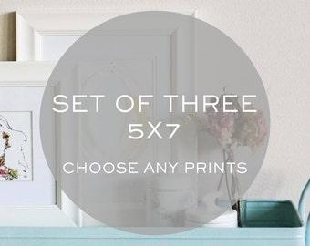 Set of Three 5x7 prints - Choose ANY print
