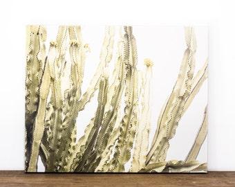Cactus Canvas Wrap, Modern Wall Decor, Ready to Hang Art, Cacti Artwork, Southwest Picture, Desert Photograph, Minimalist Living Room Art