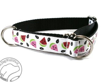 "SALE - Summer Picnic Watermelon 1""  Dog Collar, Martingale or Quick Release"