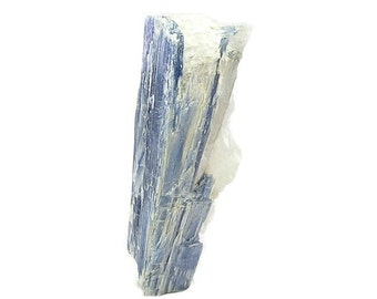 Blue Kyanite Crystal Blade in quartz, Mineral Specimen Mined in the gem fields of Brazil, geology display for a rock and mineral collection