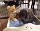 Bunny Rabbit Snuggle Bed- extra large