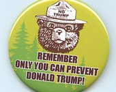 Remember Only You Can Prevent Donald Trump  2016 button