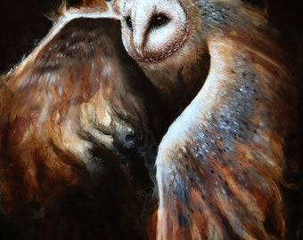 Original - Barn Owl Painting by Danielle Trudeau 16x20 Acrylic and Oil Painting Wildlife