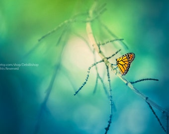 Journey Of The Monarch Butterfly -Fine Art Canvas Gallery Wrap -Nature Photography -Butterfly Bokeh Tree Branch -Home Decor Wall Art