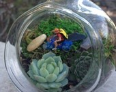 Bicycle Lovers! Handblown Glass Miniature Succulent Terrarium