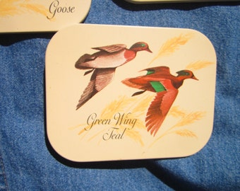 Water Fowl Coasters  Duck Goose Greenwing Teal Pintail Duck   Duck Hunter Decor   Gift for HIm  Lodge Decor  Hunting Cabin Decor