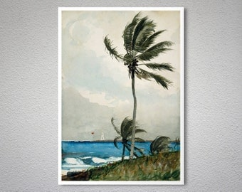 Palm Tree, Nassau by Winslow Homer  -  Poster Paper, Sticker or Canvas Print