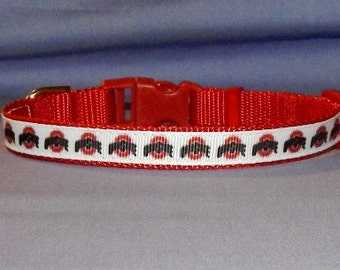 Extra small Ohio collar