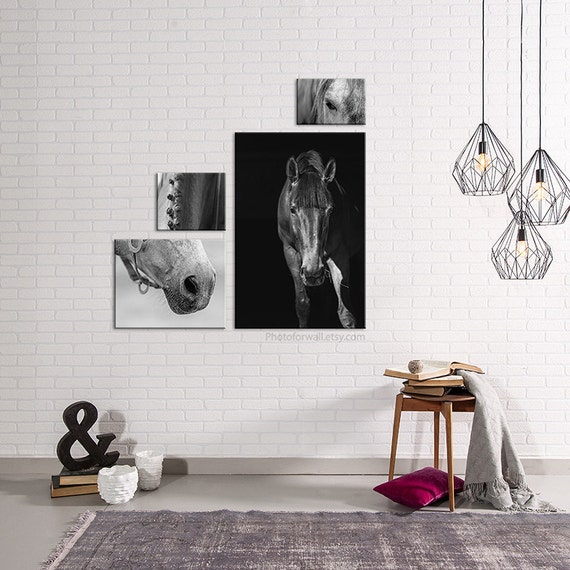 Bathroom Decor Featuring Horseshoes : Horse decor canvas art photography bathroom rustic