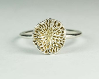 Spore Ring, Made to order in sterling silver