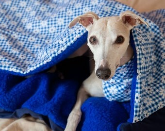 Whippet Sleeping Jackets Picture   Dog Breeds Picture