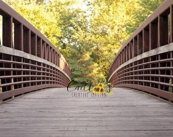 Digital Photography Bridge Background