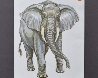 elephant flashcard print