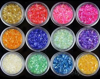 12 pots in 1 Nail Art Glitter Shell powder set for DIY Handmade & UV-Gel Nail Art Decor