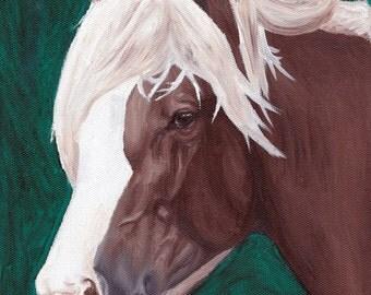 ORIGINAL: Chincoteague Pony Stallion Surfer's Riptide Oil Portrait