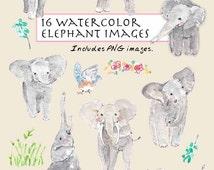 CLIP ART- Watercolor Elephant Set. 16 Images. Digital Download. Animals. Baby Shower. Grey. Bird. Giant. Water.