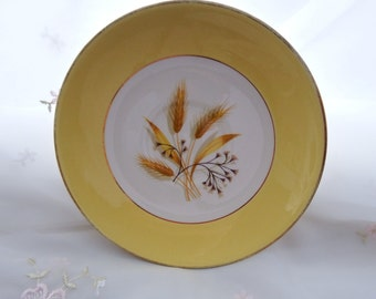 Vintage 1950s Autumn Gold by Century Service Cup Saucers (no cups)