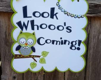 Baby Boy Owl Door Sign