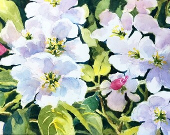 Spring trends Apple Blossoms watercolor painting original