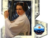 Digital instructions for creating a Classic Princess Leia gown