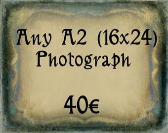Any A2 (16 x 24) Photograph