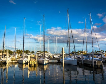 Boats in a marina in St. Petersburg, Florida. | Photo Print, Stretched Canvas, or Metal Print.