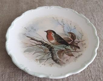 Royal Albert collector plate | woodland birds, robin