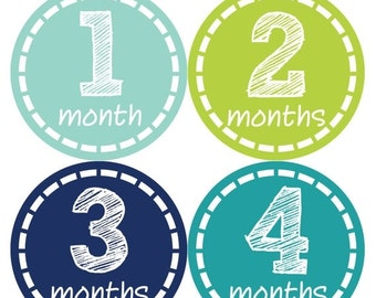 Monthly Stickers Monthly Baby Stickers Baby Month Milestone Stickers Baby Month Stickers Month to Month Bodysuit Stickers Shower Gift 113