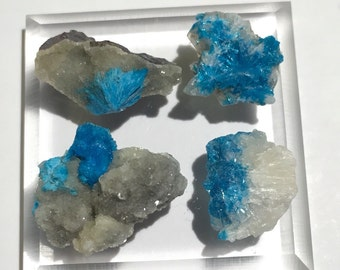 4pc 13.9ct Cavansite w/ Stilbite Set - Wagholi Mine, Maharashtra, India - Item:CV16010