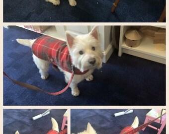 Genuine Harris tweed dog jacket Extra Small