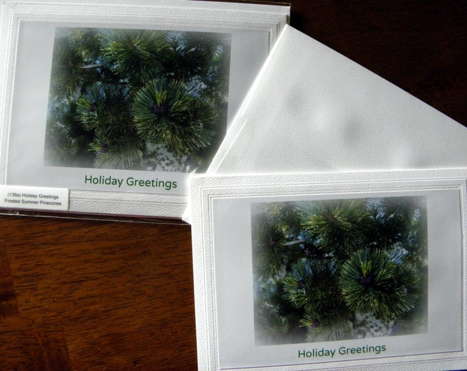 CHRISTMAS Holiday CARD Set - 12 Cards and Envelopes AND Free Shipping too!