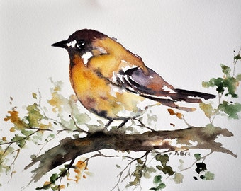 ORIGINAL Watercolor Painting Bird on a Branch Illustration, Golden Yellow Bird  6x8 inch