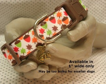 """Autumn, fall, acorns, colorful leaves, squirrel  1"""" wide adjustable dog collar with squirrel  charm LEASHES AVAILABLE"""